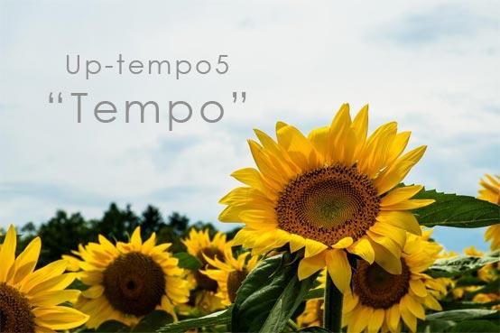 Up-Tempo5 Tempo テンポを再設定する