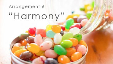 Arrangement-6 Harmony 友人曲の編曲 ハモリ等の追加