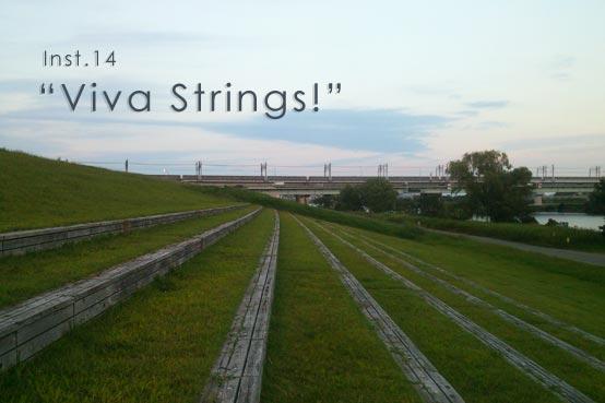 instrumental14 Viva Strings!